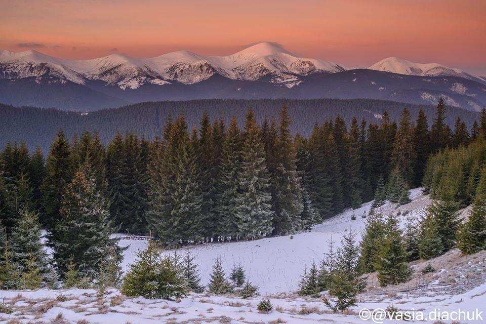 Казковий ранок у зимових Карпатах: як виглядають оповиті хмарами засніжені схили гір (відео)