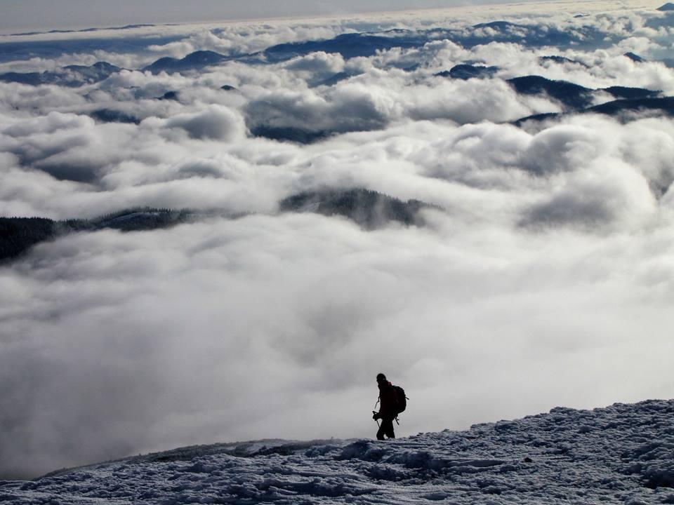 Зимові Карпати у тумані: мережу підкорюють неймовірні світлини з Чорногірського хреба (фоторепортаж)