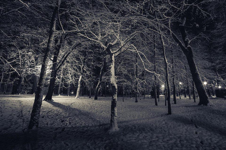 В мережі набирають популярності світлини засніжених скверів Коломиї (фоторепортаж)