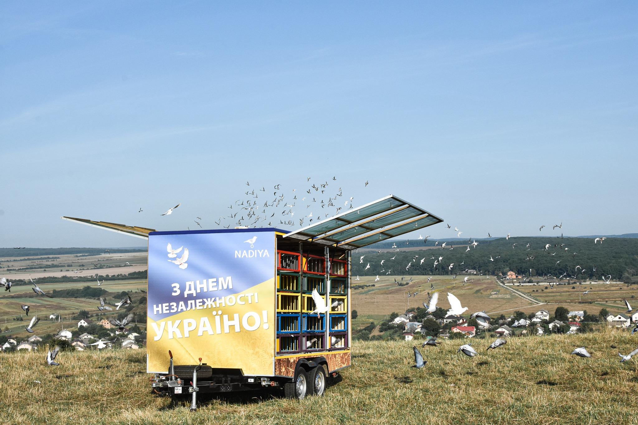 Символ миру: на Прикарпатті у небо випустили 1200 голубів (фото+відео)